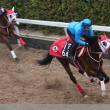 【スプリングS】データ分析から推奨馬の発表【2015年】