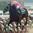 【中山牝馬S】データ分析から勝ち馬を導く!【2015年】ケイアイエレガント