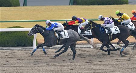【園田競馬・オッズパーク・LOTO杯2017】予想|次にA1へ昇格する馬は誰か?◎はアキノクリンチ。