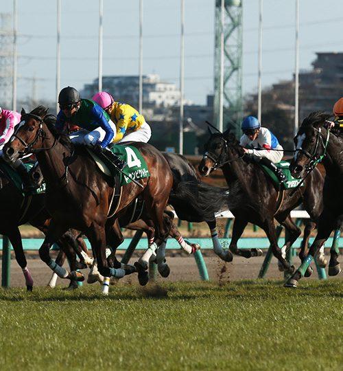 【中山牝馬ステークス】マキシマムドパリは勝負気配の引退レース!【2018年】