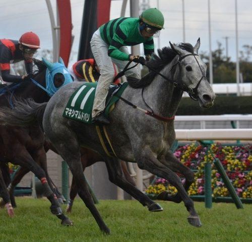 【中山牝馬ステークス】最終予想マキシマムドパリ本命もバンゴールに期待!【2018年】