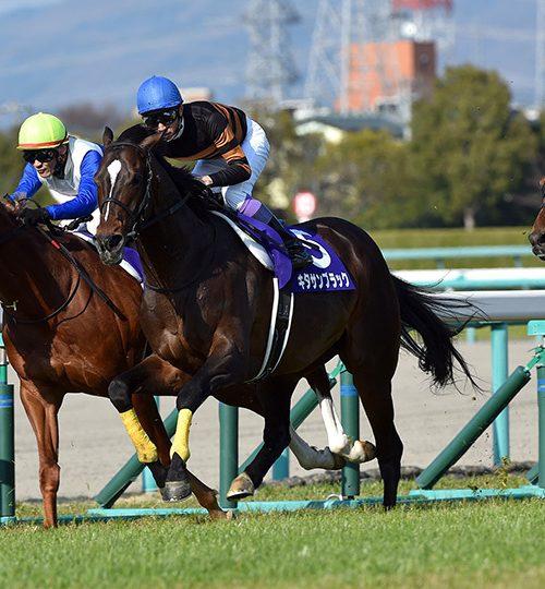 【大阪杯】単勝人気9番人気以内から。本命アルアインに一歩前進【2018年】