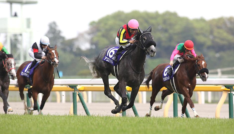 NHKマイルカップ2018 出走予定馬とデータ分析 ◎デルタバローズを穴軸 ...