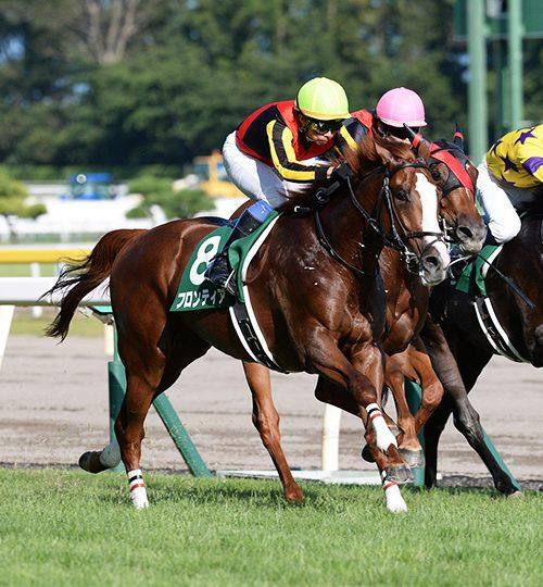 新潟2歳ステークス2018データ分析|勝ち馬候補は3頭!