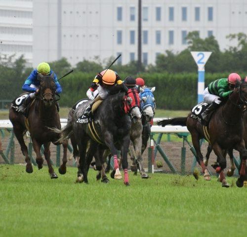 関屋記念2018出走予定馬分析|フロンティアがベターか。有力馬に死角も見え隠れ!!