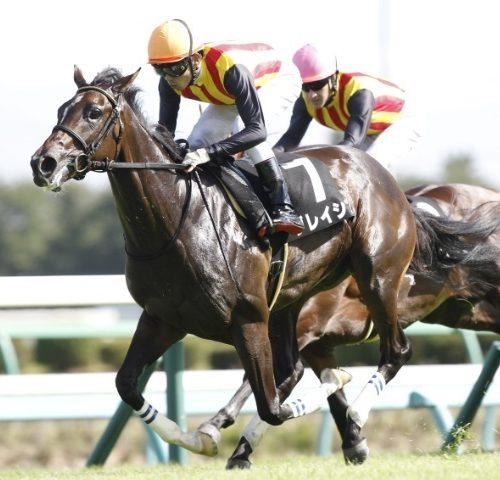 【競馬】アルテミスS2018予想|グレイシア・エールヴォアの2強を信頼!