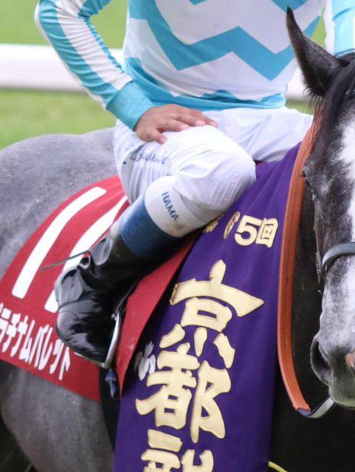 【競馬】京都大賞典2018予想|穴馬プラチナムバレットから勝負!!馬連5頭流し!