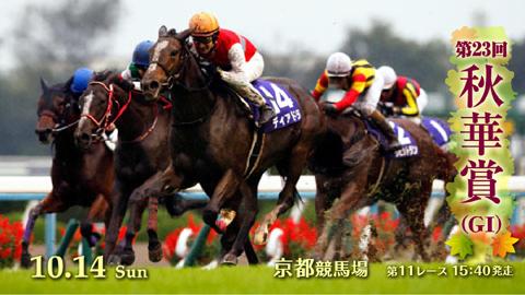 【競馬】府中牝馬ステークス2018予想|本命サイドで決まりそうも、穴馬も押さえる弱気な馬券で勝負!!