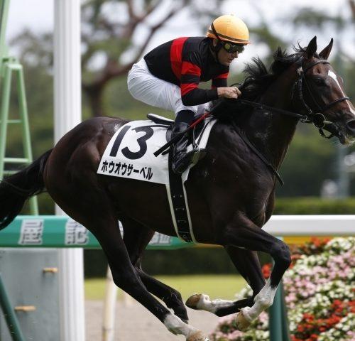 東京スポーツ杯2018|ここもやっぱり外国人騎手か?配当的には土曜のミルコ・デムーロに期待!!