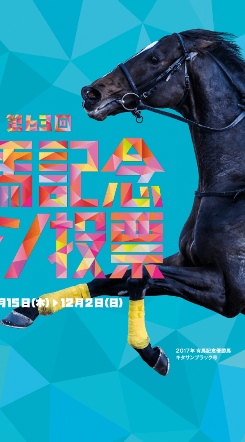 有馬記念2018出走予定馬|レイデオロ・シュヴァルグランの2頭が中心!!