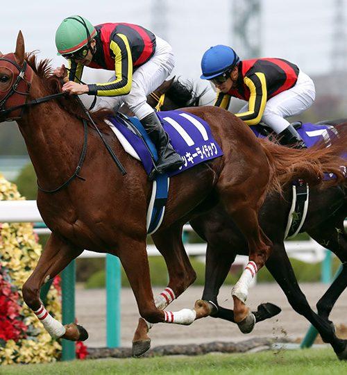 阪神ジュベナイルフィリーズ2018データ分析|データからの推奨馬は4頭も満点回答は不在!!