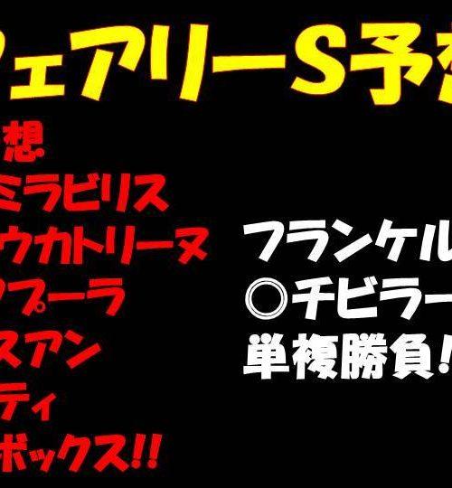 フェアリーステークス2019競馬予想|チビラーサンの単複勝負!!【2019年1月12日】