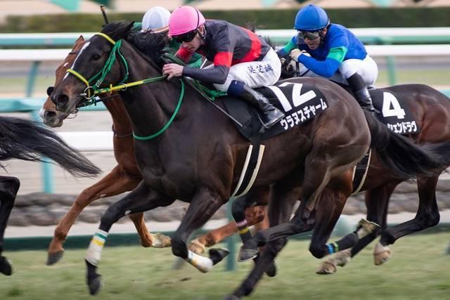 中山牝馬S2019予想