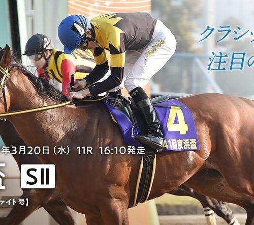 大井競馬・京浜盃2019最終予想|ウィンターフェルから穴馬へ流す!【2019年3月20日】