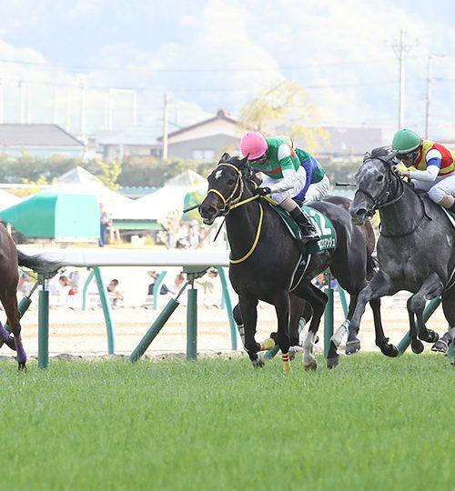 福島牝馬ステークス2019データ分析と最終予想|大穴にミッシングリンクを指名!