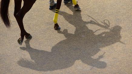 エプソムカップ&マーメイドステークス2019最終予想|穴馬を軸にワイドで手広く!!