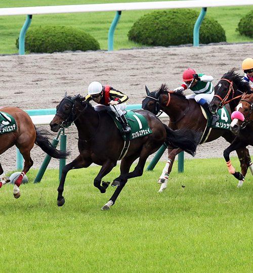 マーメイドステークス2019データ分析|勝ち馬にドンピシャ!データ推奨馬はここだ!