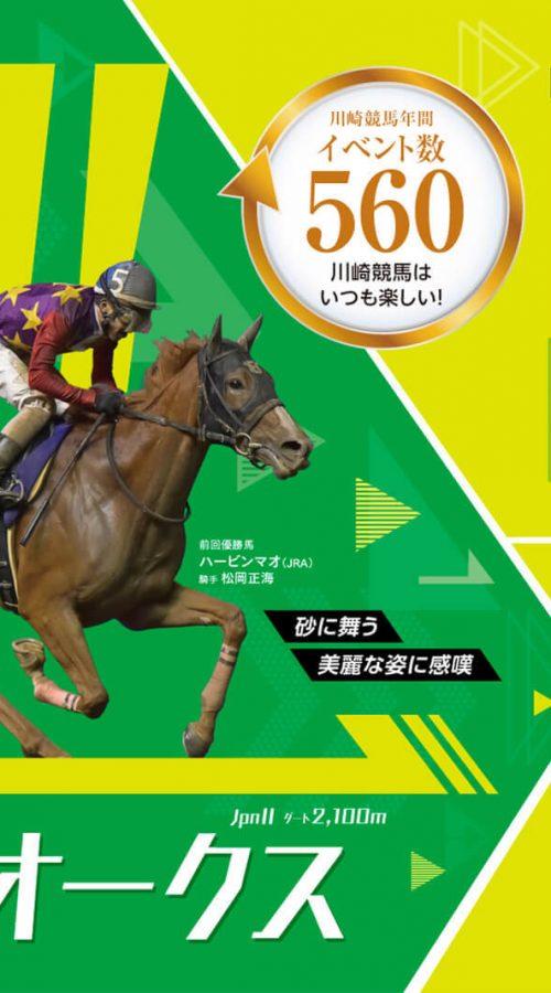 関東オークス2019最終予想【動画あり】勝つのはJRA所属馬か?!