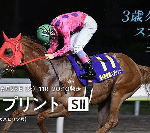 【大井競馬】優駿スプリント2019予想|本命は前走好時計で勝った穴馬から!