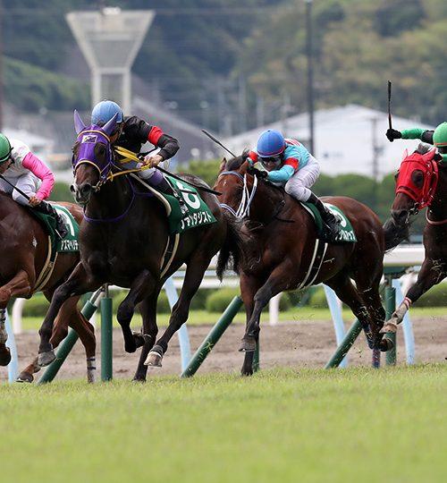 小倉2歳ステークス2019競馬予想|波乱予想の馬連・ワイド3点流し!