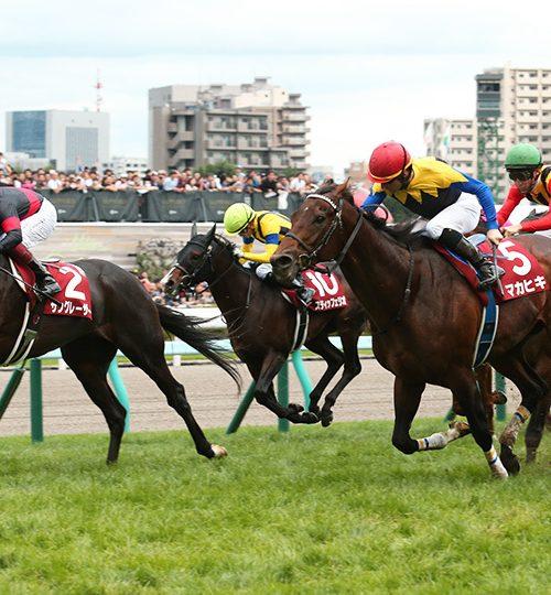 札幌記念2019データ分析|データからの推奨馬はここ!