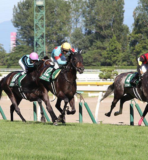 関屋記念2019枠順確定|データ推奨の勝ち馬候補は4歳牝馬のココ!