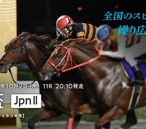 東京盃2019最終予想|JBCスプリント前哨戦も藤田菜七子コパノキッキングは消し!