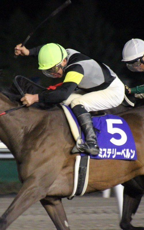 東京2歳優駿牝馬2019予想|門別出身馬のみを狙う!本命ミステリーベルン!