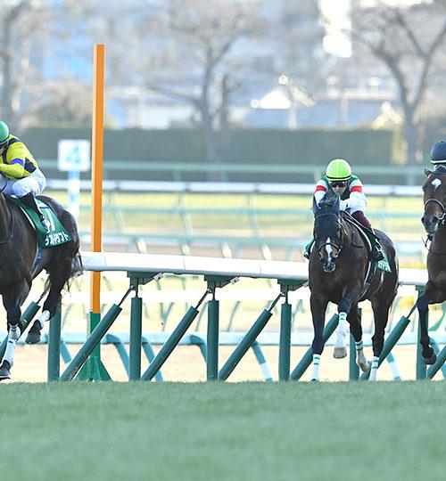 京成杯2020予想|展開と馬場から差し馬決着!ゼノヴァース・クリスタルブラックで勝負!
