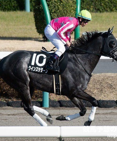 川崎競馬・日吉オープン2020予想|クインズサターンが転厩初戦を飾る!