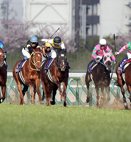 高松宮記念2020データ分析|満点回答は3頭!人気馬2頭+穴馬!