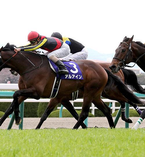 大阪杯2020データ分析|データ推奨馬は2頭!本命候補もデータにマッチ!
