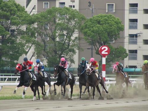 競馬 予想 名古屋