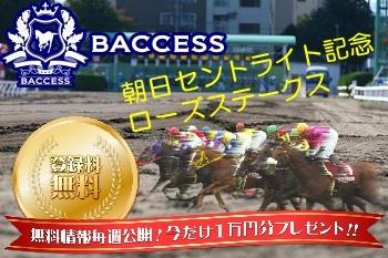 菊花賞トライアル, 競馬予想, 朝日杯セントライト記念